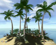 Ocean Island 3D Screensaver screenshot
